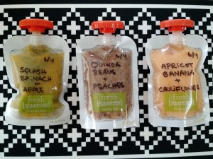 How To Make Homemade Baby Food Pouches